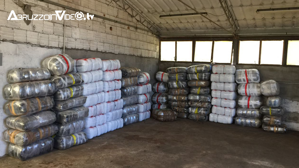 Fossacesia, sequestrate 2 tonnellate di marijuana